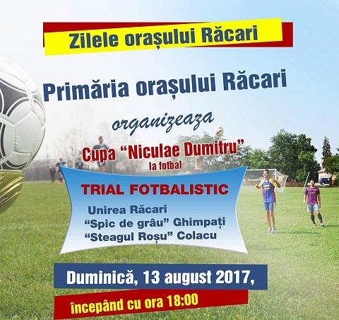 racari8213